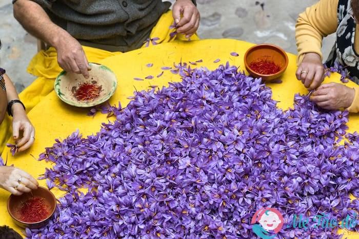 Tác dụng nhụy hoa nghệ tây